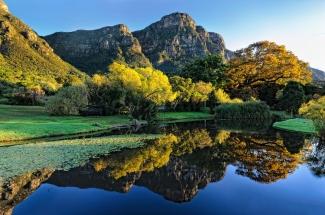 Beautiful Kirstenbosch Gardens. South Africa Photo Tour