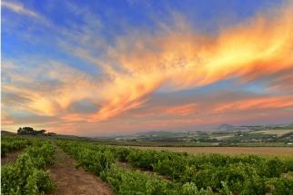 Sunset over Stellenbosch captured winelands Photo Tour