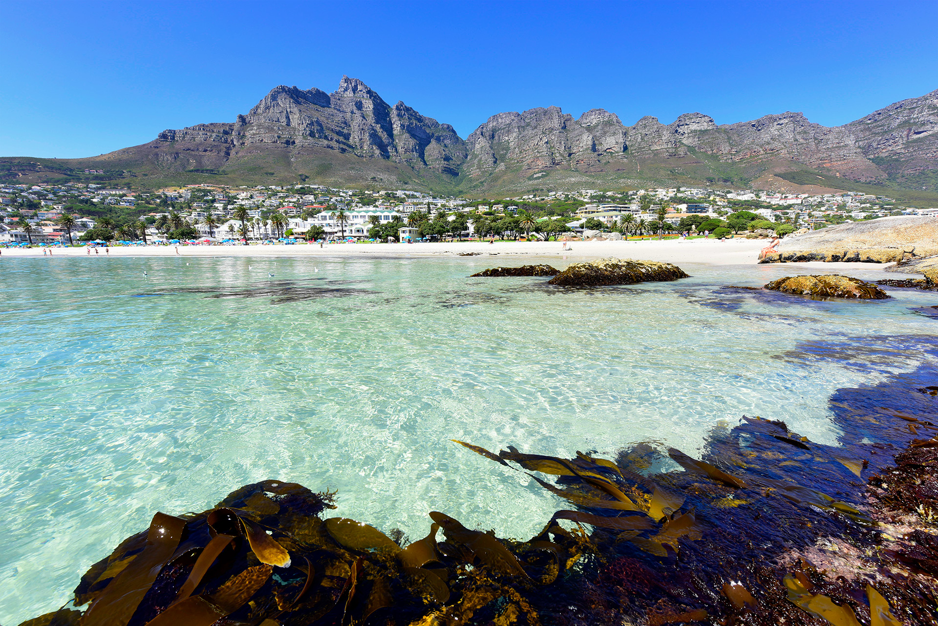 Photography tours best time to visit cape town photos for What to see in cape town