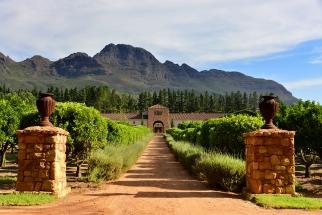 Cape Winelands Photo Tour