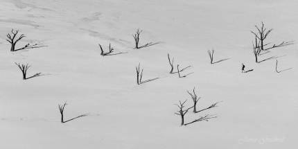 Black and White Image of Deadvlei with a photographer for scale. Namibia photo tours