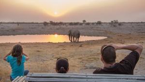 Family watching elephant sunset Okaukeujo Etosha Namibia Photo Tour