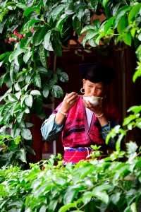 Portrait Longsheng Village Lady drinking Tea. Photo Tour China