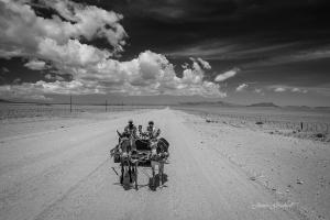 Damaraland Donkey cart. Namibia Photo Tour