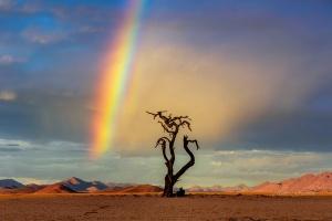 Rainbow Lone Tree Landscape Namibia. Copyright James Gradwell
